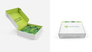 Packaging Design Services Houghton, Michigan